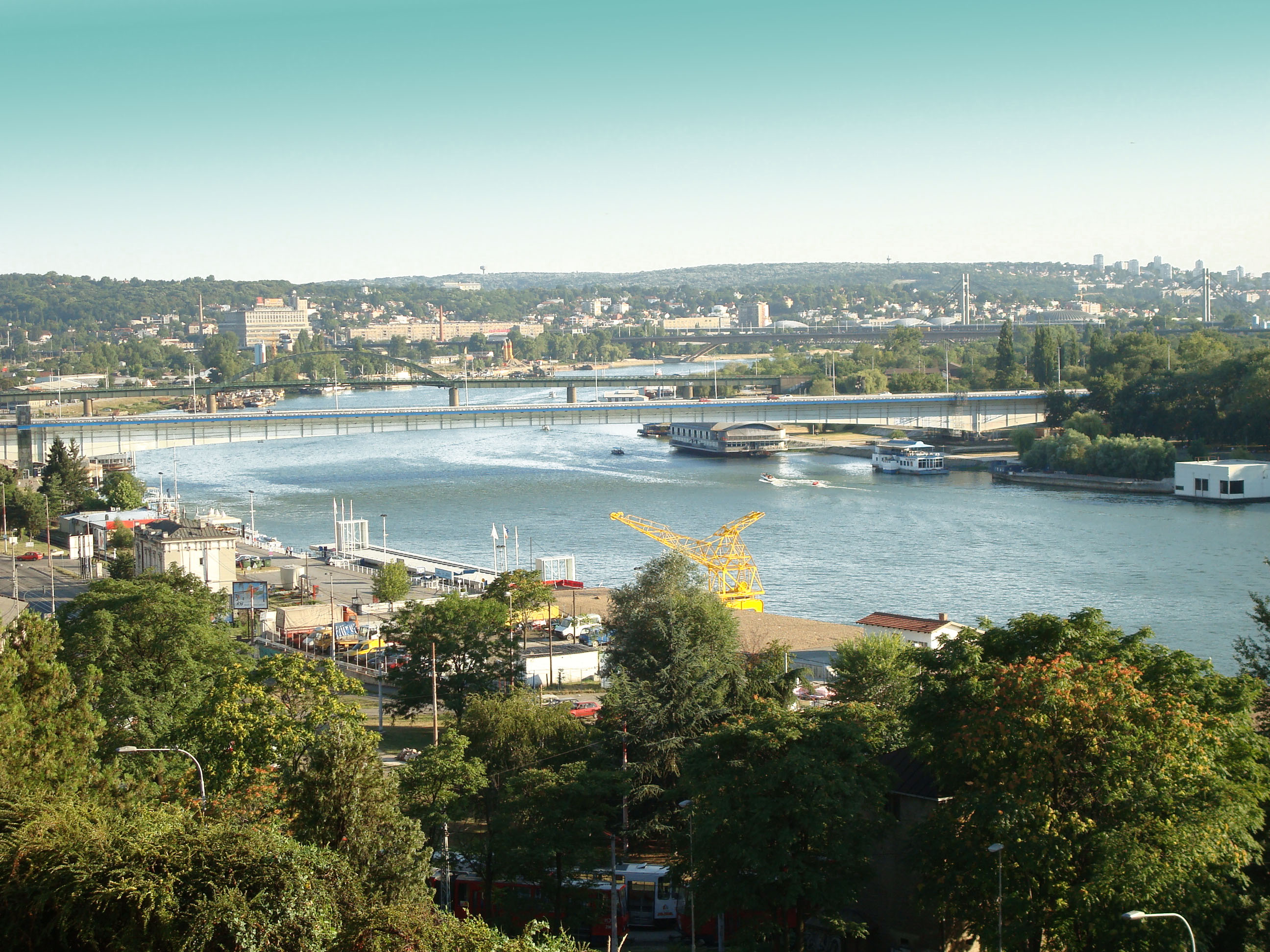 Sava_river_in_Belgrade,_view_from_Kalemegdan_fortress