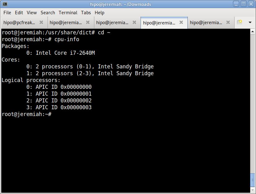 Linux-get-processor-system-info-in-console-cpu-info
