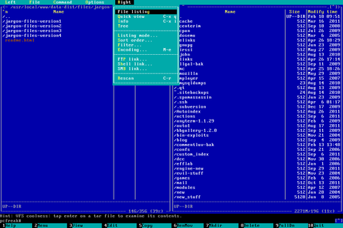 Linux text console tty mc screenshot with snapscreenshot terminal / console snapshotting program