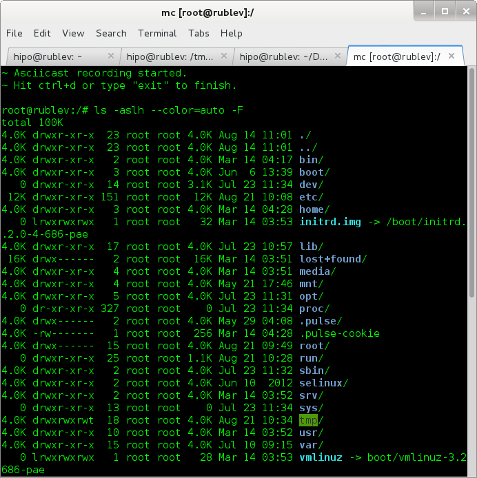 /var/www/images/asciinema-create-and-upload-ascii-terminal-console-videos-debian-gnu-linux-screenshot