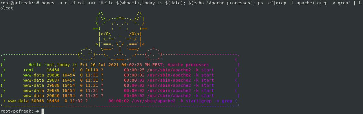 boxes-lolcat-colored-apache-processes-cat-login