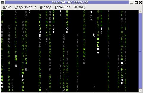 Cacaserver - caca for the network screenshot Matrix cacademo