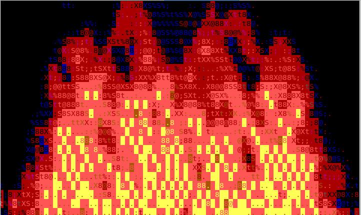 cacaview-fire-screenshot-ascii-art