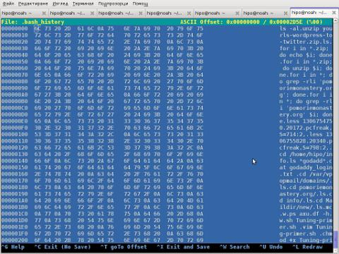 Chexeditor FreeBSD 7.2 OS Screenshot