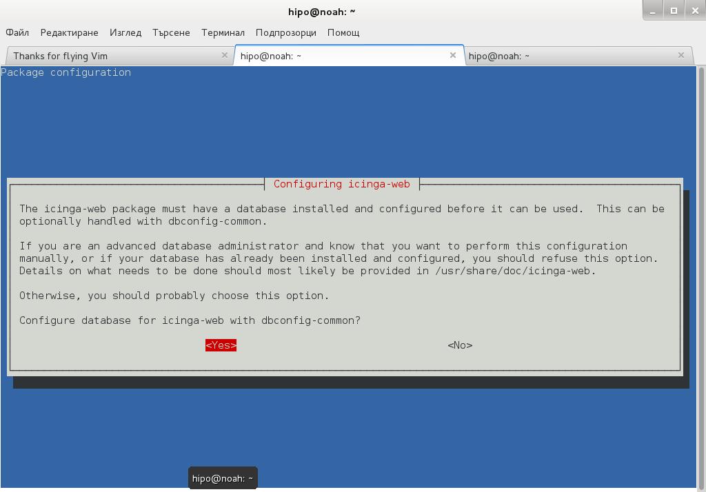 configuring-icinga-web-debian-linux-configuring-database-shot