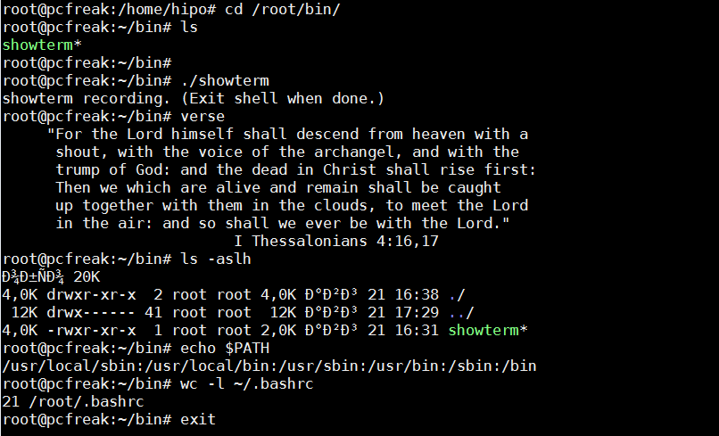 create-video-from-your-linux-console-terminal-with-showterm-screenshot