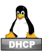 dhcp linux ovewrite dns settings from console and terminal Debian Ubuntu Fedora CentOS Linux