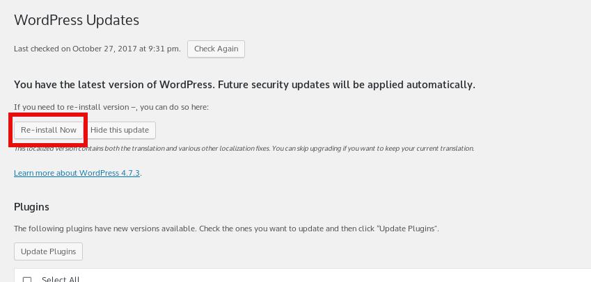 downgrade-wordpress-howto-wordpress-re-install-button-screenshot