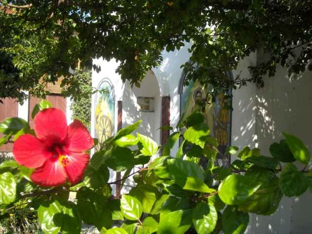 Flowers in front of Holy Sprint Pomorie Monastery St. Martyr George