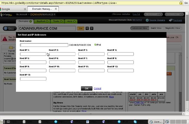 Godaddy Host Summary, Registration Custom DNS Godaddy popup window