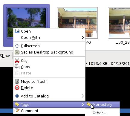 GThumb picture properties tag menu shot