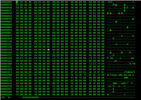 hexedit screenshot Debian Linux Squeeze
