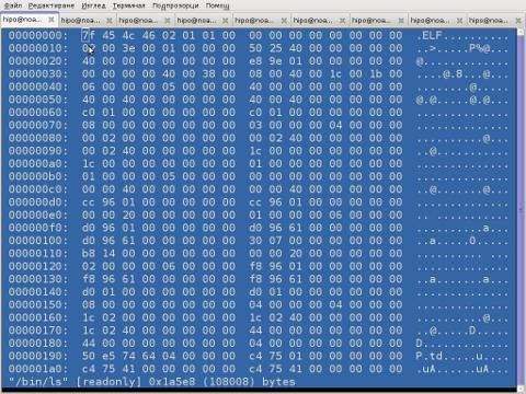 Hexer Debian Linux vim like binary editor screenshot