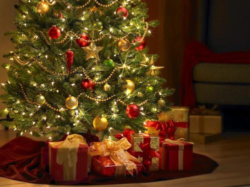 Legends about the Christmas Fir Tree