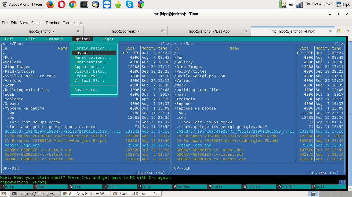 mc-menu-options-layout-screenshot