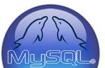 Forgot MySQL password root alternative way to enter as administrator in MyQL MySQL logo with 2 dolphins