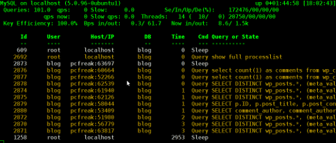 MyTOP showing queries running on Ubuntu 8.04 Linux - Debugging interactively top like MySQL