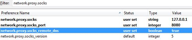 network-proxy-socks-remote_dns-firefox-screenshot