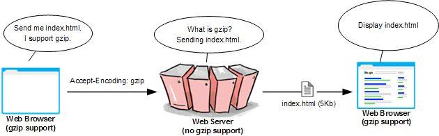 no-gzip-support-illustration
