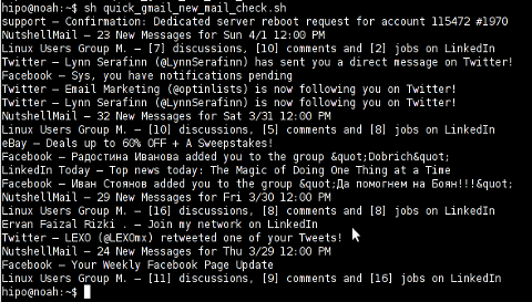 Quick Gmail New Mail Check bash script screenshot