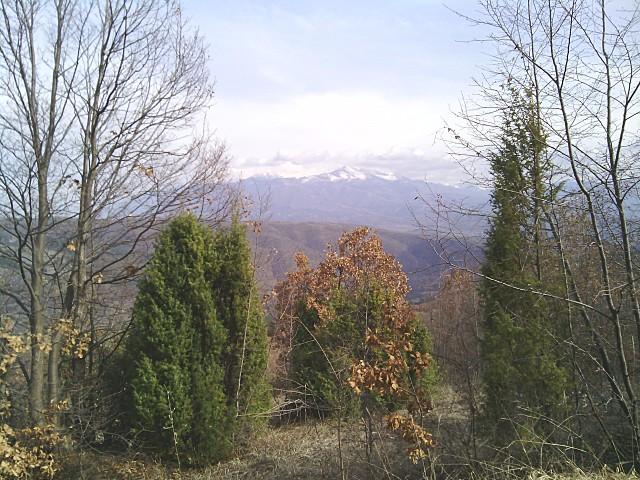 ruenski_manastir_near_sightview