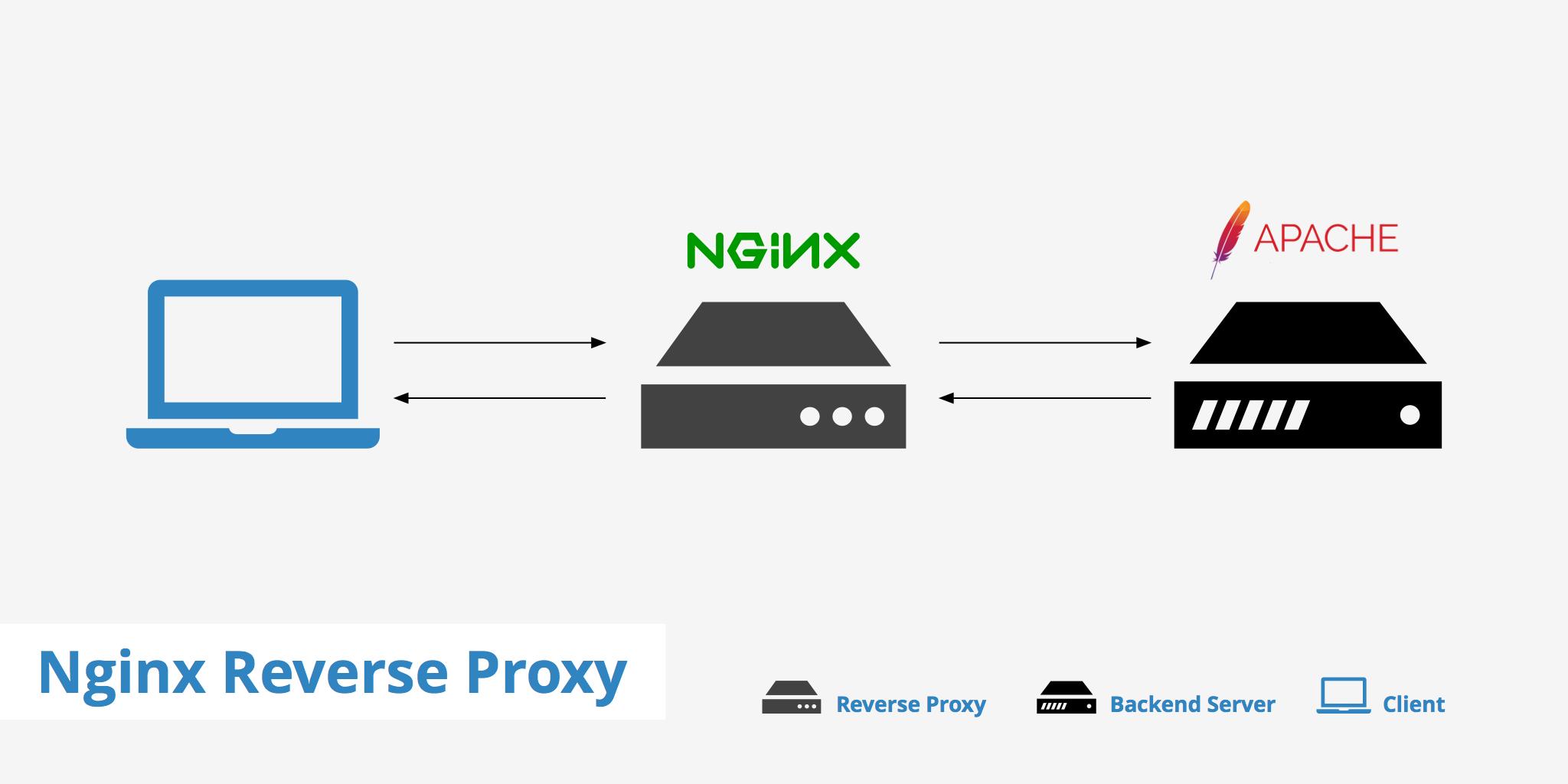 set-up-nginx-reverse-proxy-howto-linux-logo
