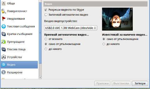 Skype Video Inverted bat like linux screenshot