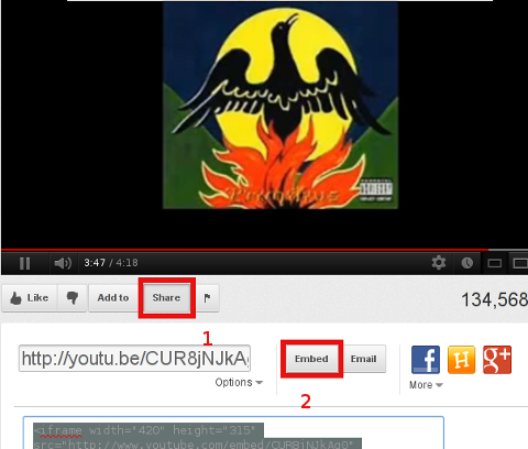 soulfly embed video share and embed code- buttons screenshot