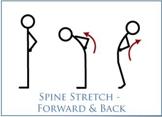 spinal-stretch-exercise-forward-and-back