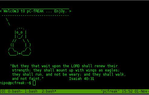 tmux gnu screen (newer) alternative terminal emulator for Linux, FreeBSD, OpenBSD