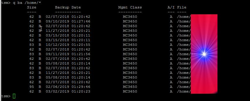 tsm-dsmc-query-user-home-for-backups