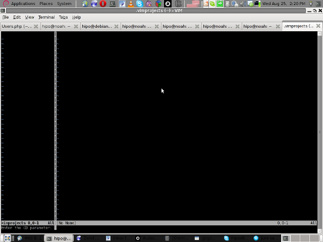 vim project extension cd parameter screen