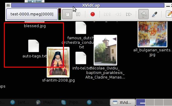 xvidcap screenshot main menu