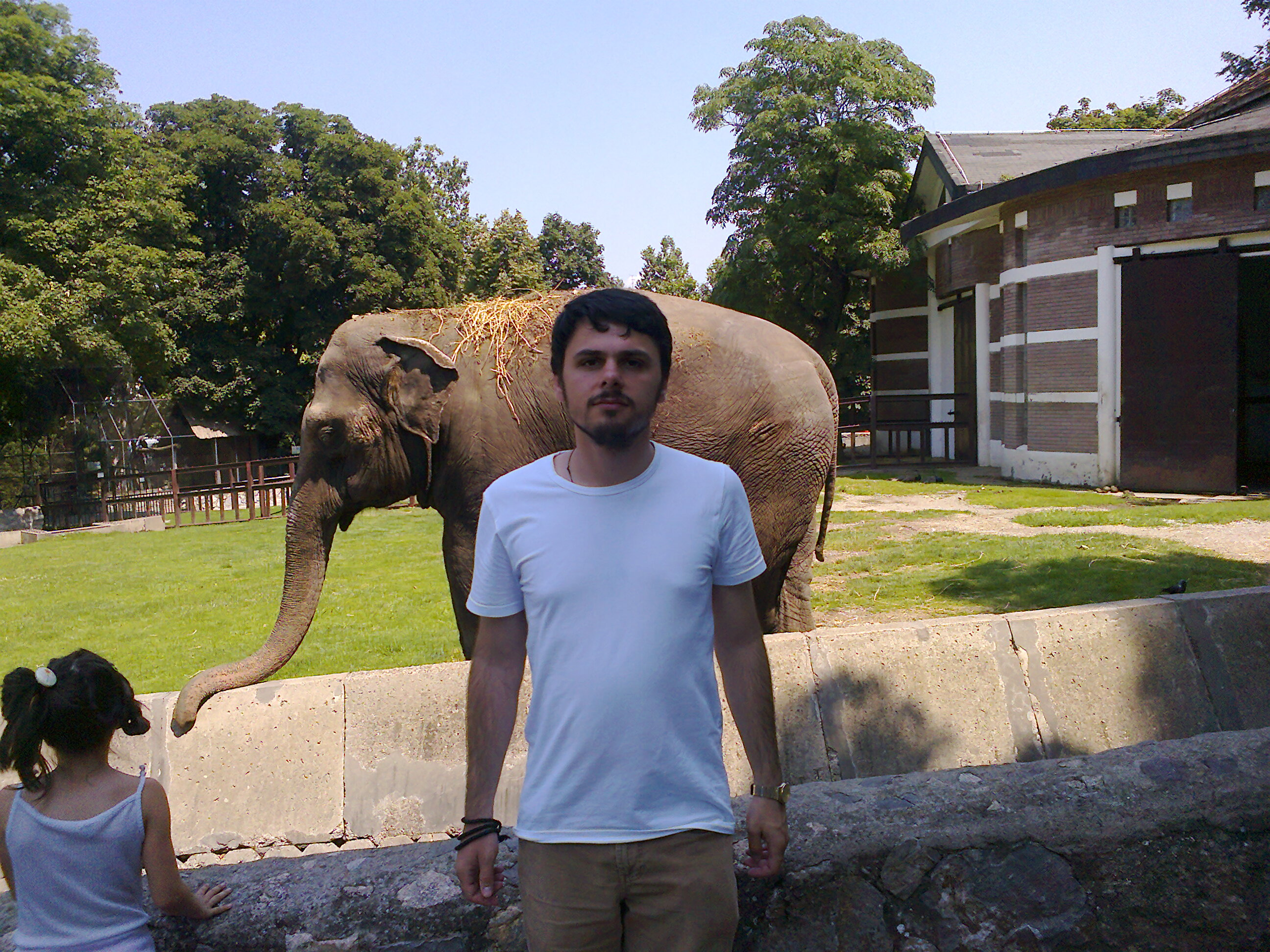 hip0-and-a-Lion-in-Beograd-Zoo