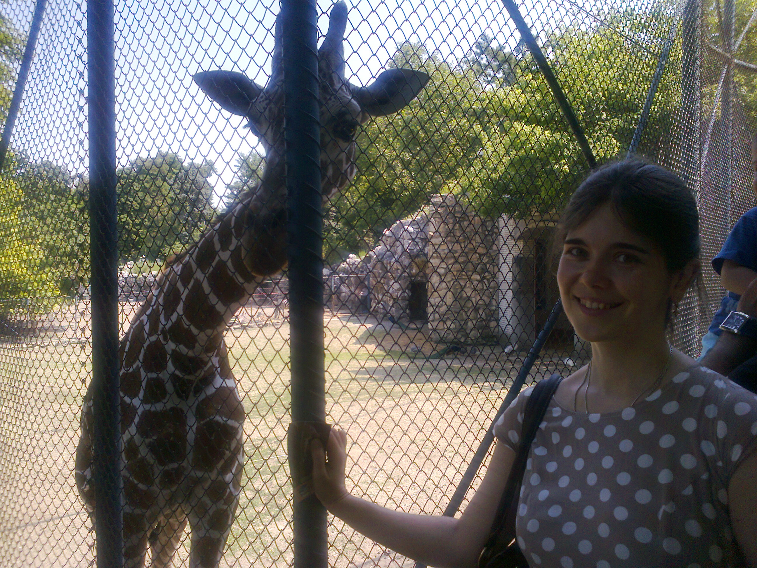 My-wife-and-a-Camelopard-in-Beograd-Zoo